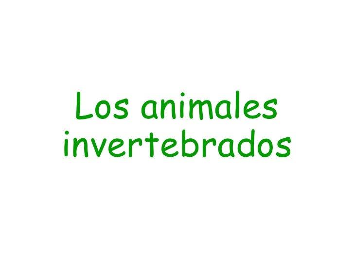 Los animales invertebrados