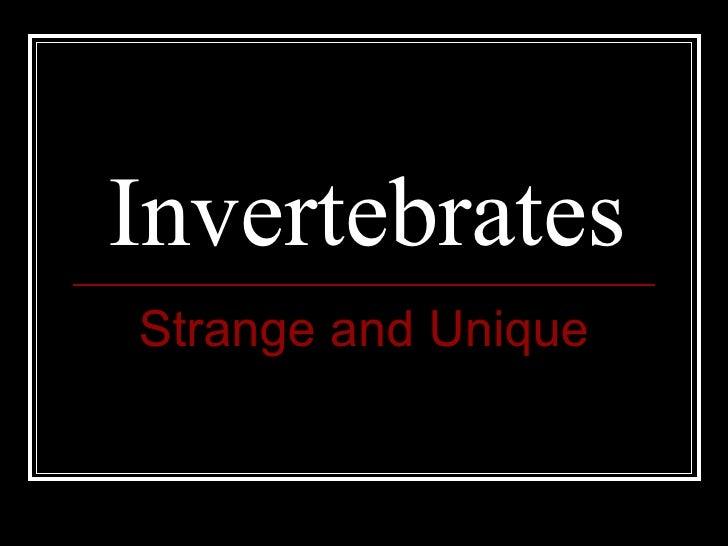 Invertebrates Strange and Unique