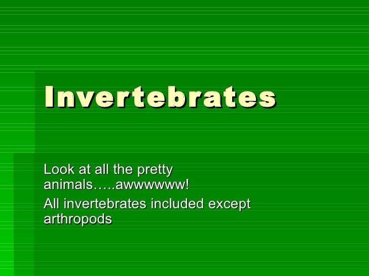 Invertebrates Look at all the pretty animals…..awwwwww! All invertebrates included except arthropods