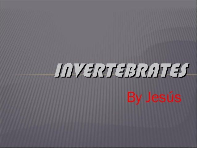 INVERTEBRATES By Jesús