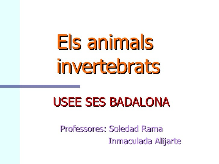 Els animals    invertebrats USEE SES BADALONA Professores: Soledad Rama Inmaculada Alijarte