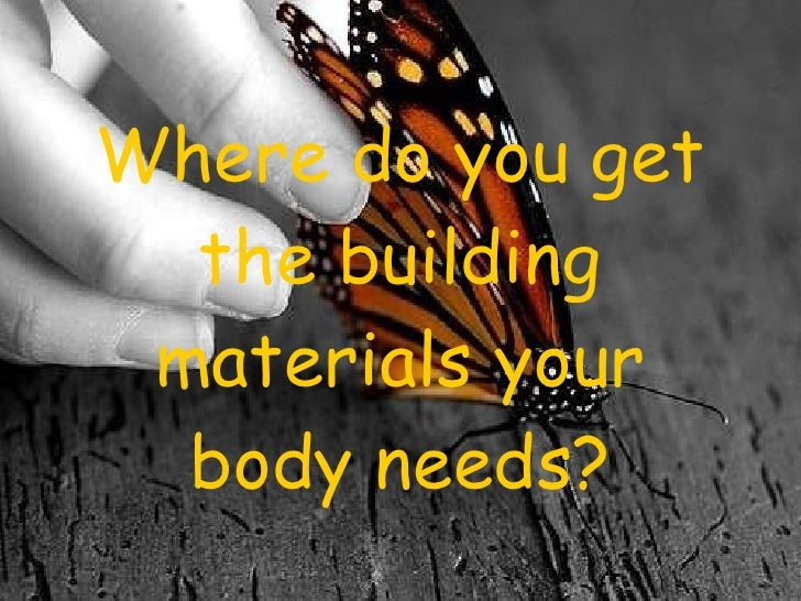 Where do you get the building materials your body needs?