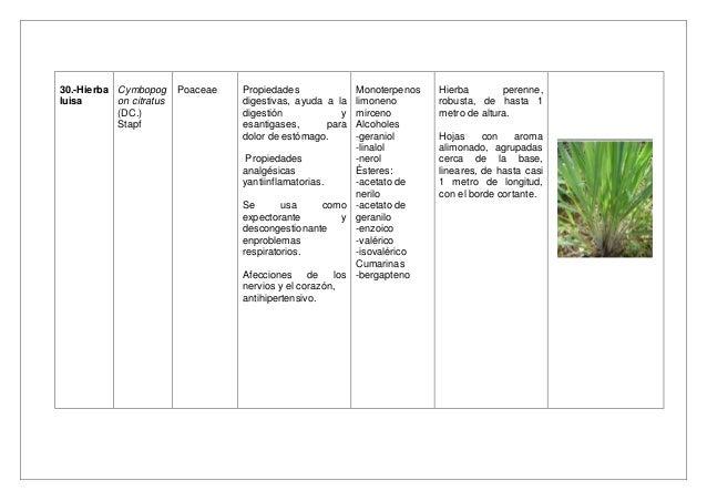 Baño De Tina Para Adelantar El Parto:Investigación e información sobre plantas medicinales
