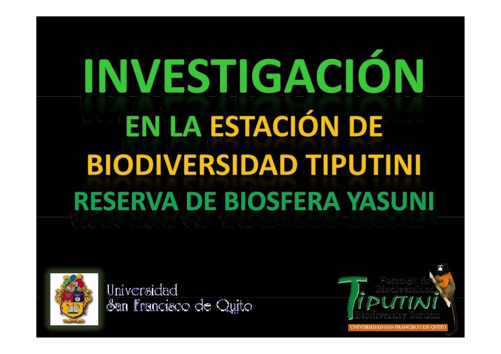 Empieza en1994 Ei         1994  ProyectodelaUniversidadSan  FranciscodeQuitoco‐financiadopor  F      i     d Q ...
