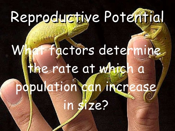 <ul><li>What factors determine the rate at which a population can increase in size? </li></ul>Reproductive Potential