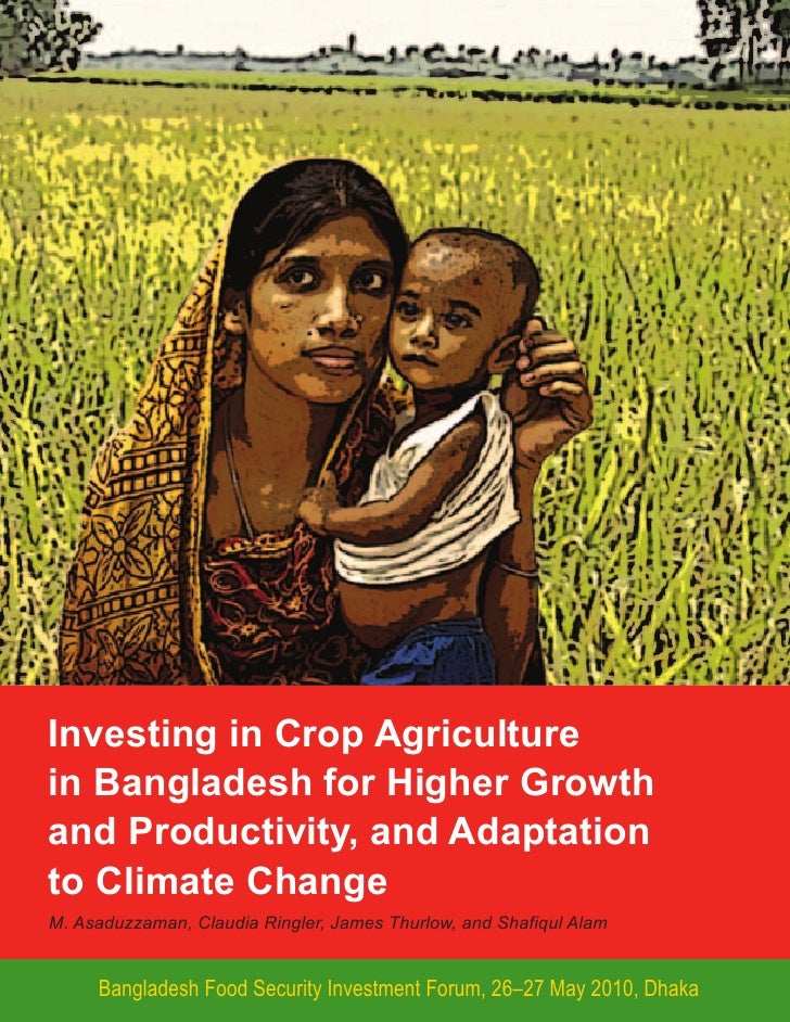 Investing in crop agriculture in Bangladesh for higher growth and productivity, and adaptation to climate change