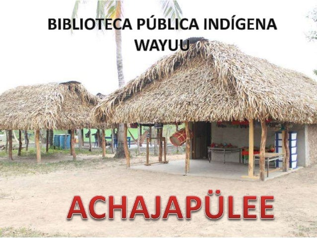 BIBLIO IEcA PUBALICA INDIGENA