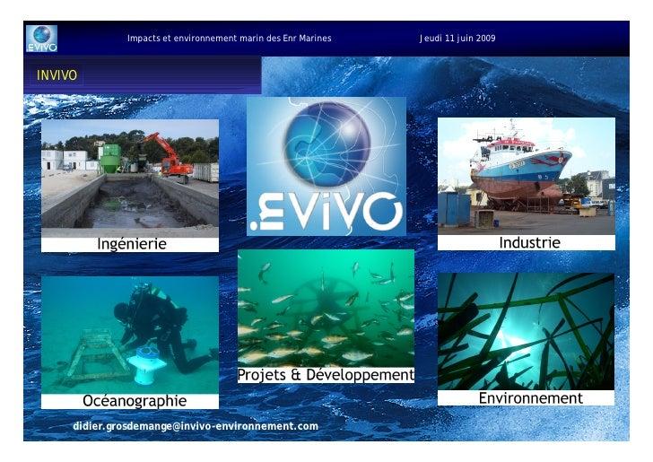 Impacts et environnement marin des Enr Marines   Jeudi 11 juin 2009    IN VIVO           didier.grosdemange@invivo-environ...