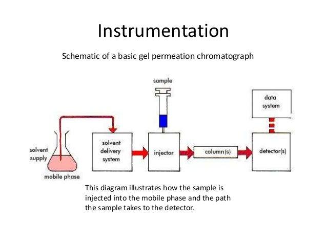 Ion Exchange Chromatography And Gec