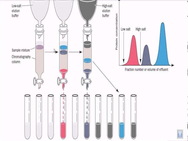 liquid chromatography tandem mass spectrometry for analysis of steroids in clinical laboratories