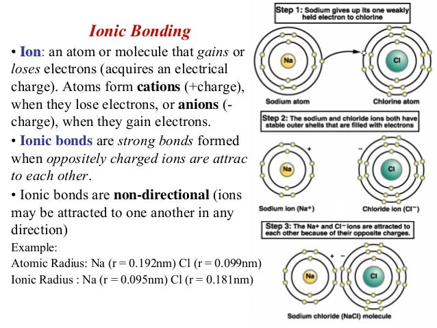 Ionic Bonding•• IonIon: an atom or molecule that gains orloses ...