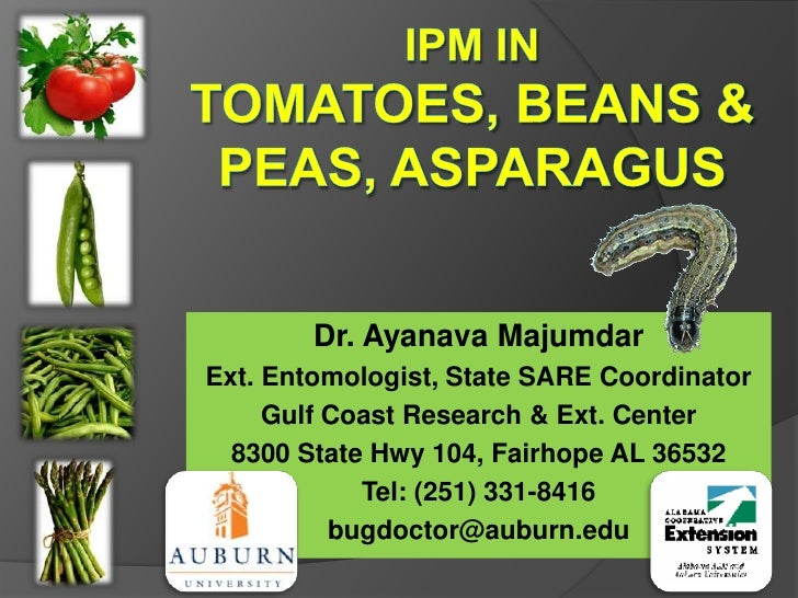 IPM in Tomatoes, BEANS & Peas, ASPARAGUS<br />Dr. Ayanava Majumdar<br />Ext. Entomologist, State SARE Coordinator<br />Gul...