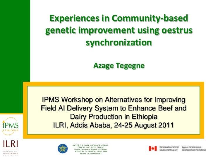 Experiences in Community-based genetic improvement using oestrus synchronizationAzage Tegegne<br />IPMS Workshop on Altern...
