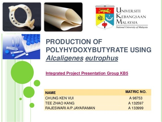 PRODUCTION OF POLYHYDOXYBUTYRATE USING Alcaligenes eutrophus Integrated Project Presentation Group KB5  NAME CHUNG KEN VUI...