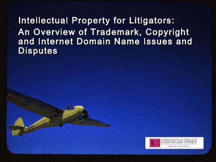 IP Litigation Overview Presentation