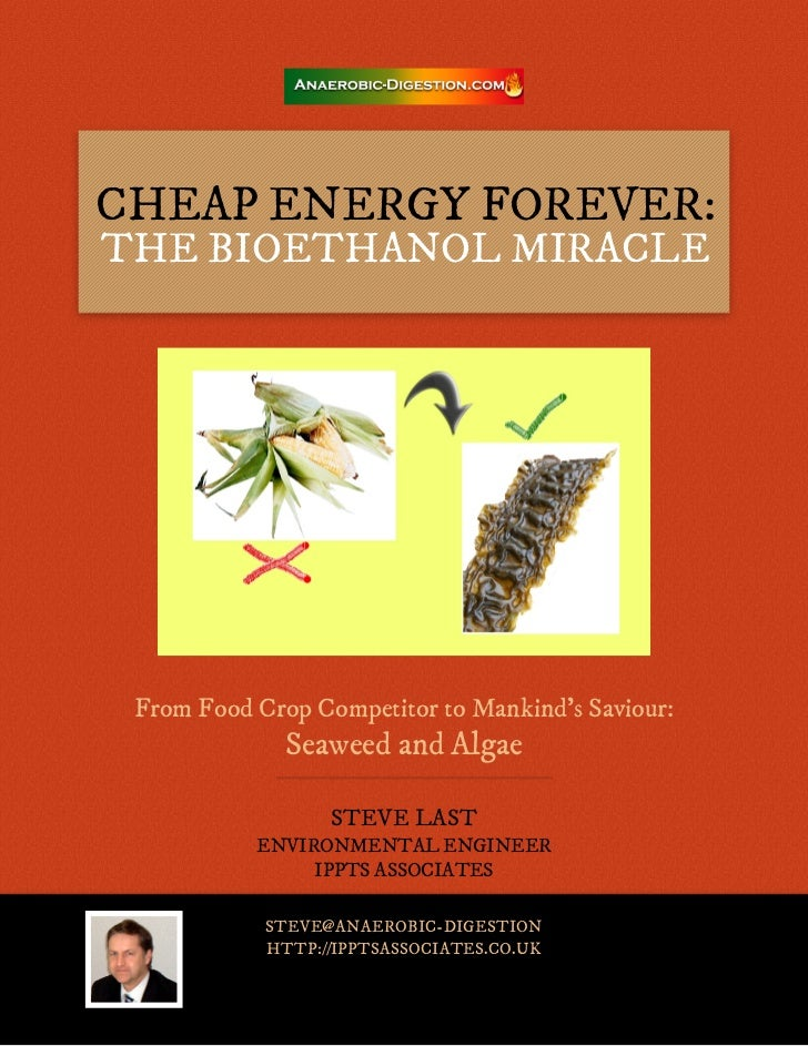 Cheap energy forever: The Bioethanol Miracle