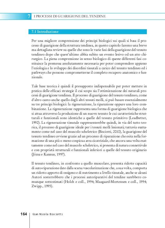 7.1 IntroduzionePer una migliore comprensione dei principi biologici sui quali si basa il pro-cesso di guarigione della st...
