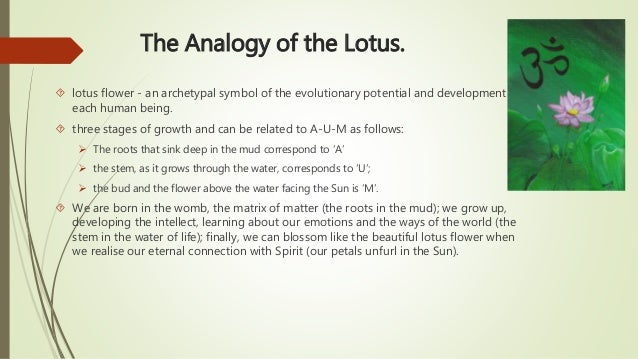List Of Synonyms And Antonyms Of The Word Lotus Flower Symbol Mean