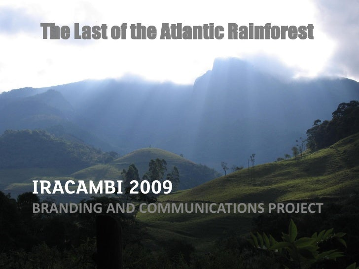 The Last of the Atlantic Rainforest     BRANDING AND COMMUNICATIONS PROJECT