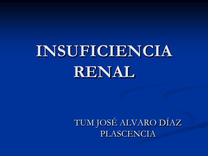 INSUFICIENCIA RENAL<br />TUM JOSÉ ALVARO DÍAZ PLASCENCIA<br />