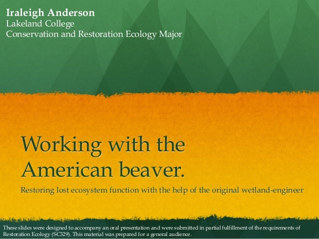 Iraleigh Anderson - Working with the American Beaver - Restoration Ecology presentation