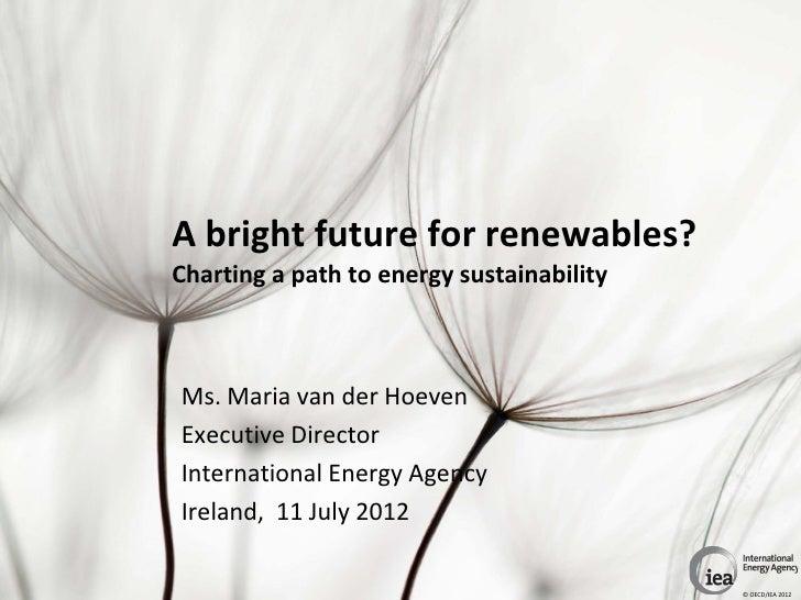 A bright future for renewables?Charting a path to energy sustainabilityMs. Maria van der HoevenExecutive DirectorInternati...