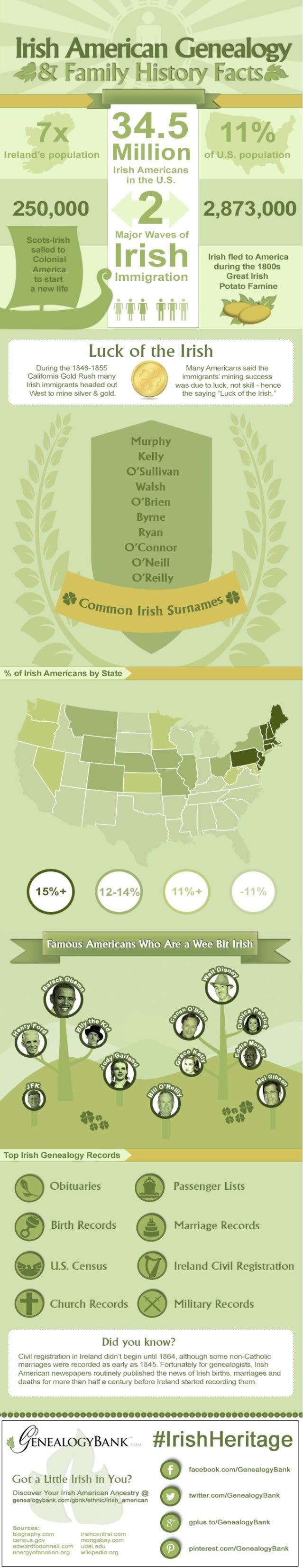 Irish American Genealogy Facts Infographic
