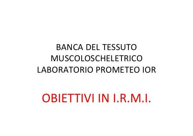 BANCA  DEL  TESSUTO   MUSCOLOSCHELETRICO   LABORATORIO  PROMETEO  IOR      OBIETTIVI  IN  I.R.M.I.