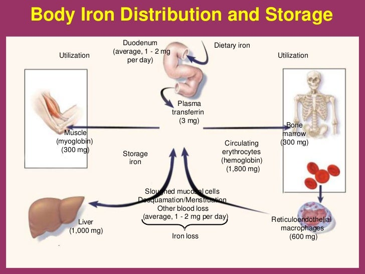 Cutaneous symptoms of zinc deficiency in adults