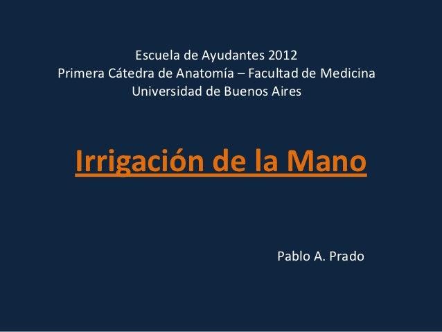 Escuela de Ayudantes 2012Primera Cátedra de Anatomía – Facultad de Medicina            Universidad de Buenos Aires  Irriga...