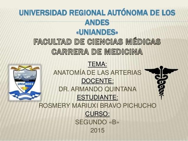 TEMA: ANATOMÍA DE LAS ARTERIAS DOCENTE: DR. ARMANDO QUINTANA ESTUDIANTE: ROSMERY MARIUXI BRAVO PICHUCHO CURSO: SEGUNDO «B»...