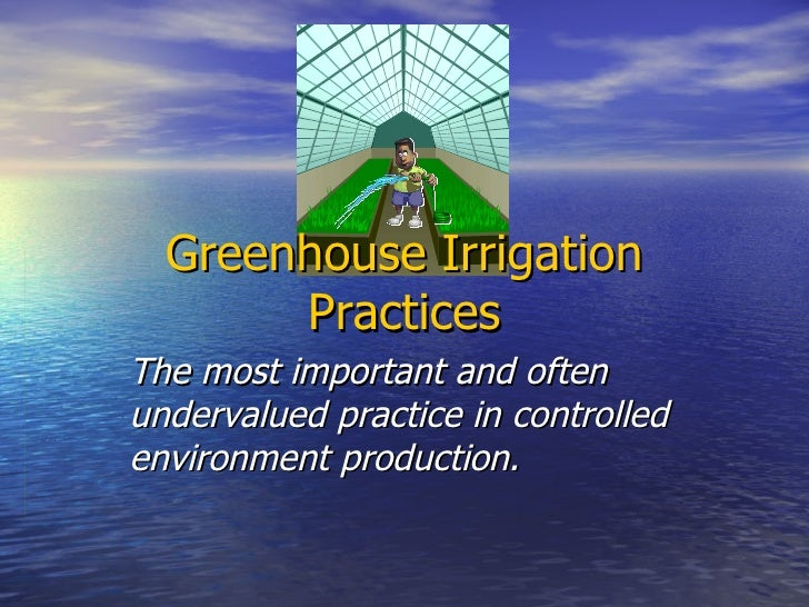 Greenhouse Irrigation Practices The most important and often undervalued practice in controlled environment production.