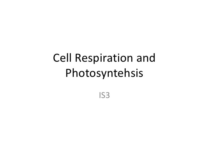 Cell Respiration and Photosyntehsis<br />IS3<br />