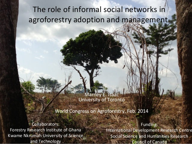 The role of informal social networks in agroforestry adoption and management  Marney E. Isaac University of Toronto World ...