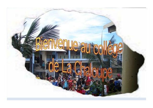 Les écoles de La Chaloupe  Les élèves du collège proviennent de 4 écoles différentes :  Estella Clain.  Notre Dame Des ...