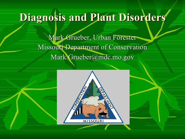 Isa diagnosis and plant disorders