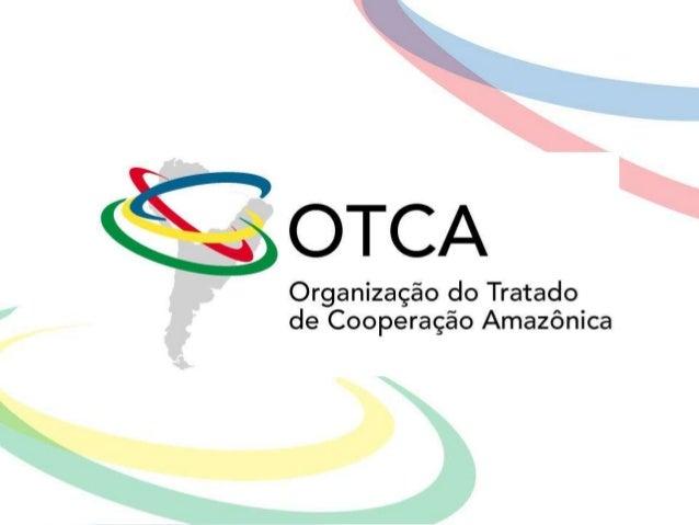 A Saúde na Nova Agenda Estratégica da OTCA