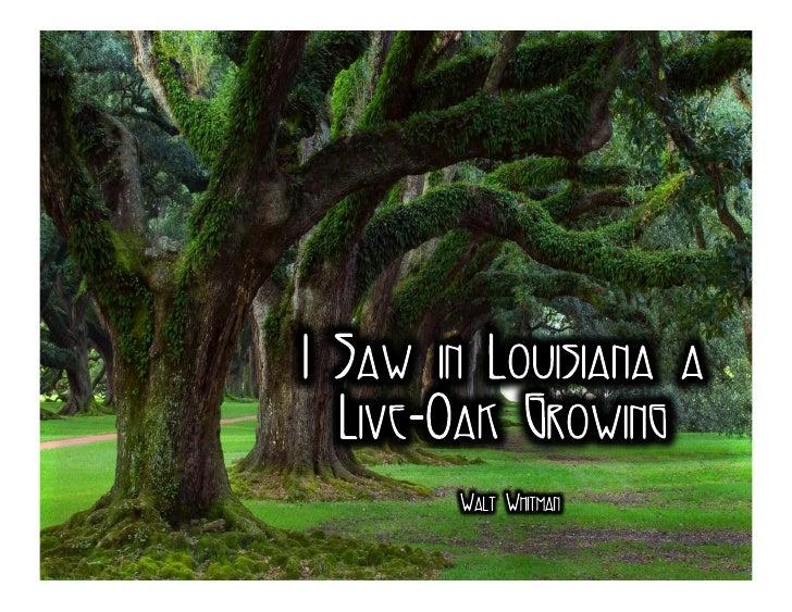 I Saw in Louisiana a Live Oak Growing - Walt Whitman