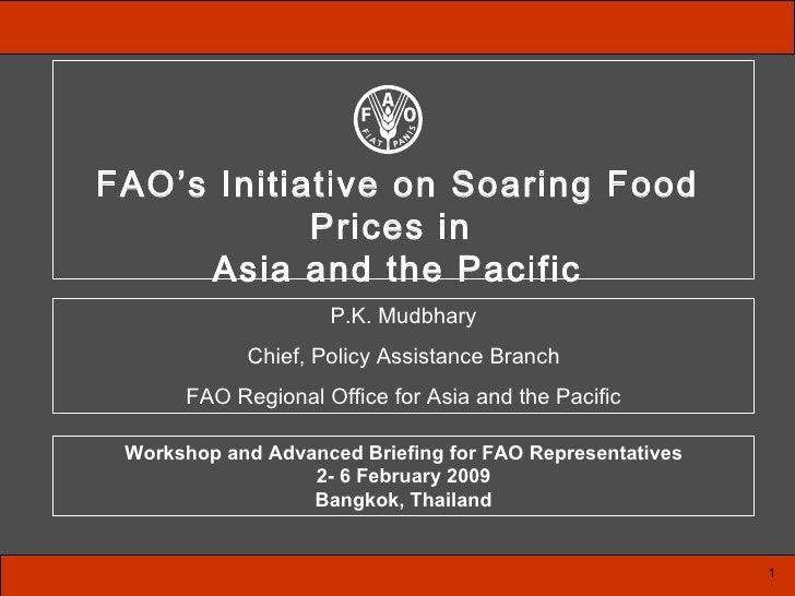 ISFP Presentation FAO APR Workshop March 2009