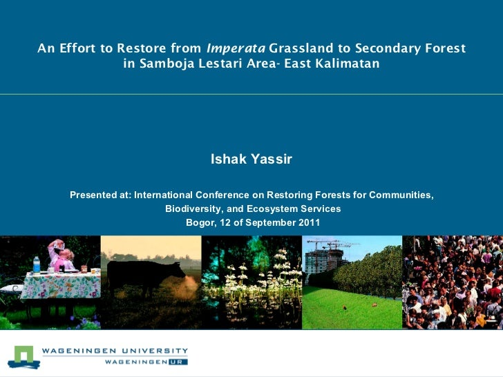 An Effort to Restore from Imperata Grassland to Secondary Forest              in Samboja Lestari Area- East Kalimatan     ...