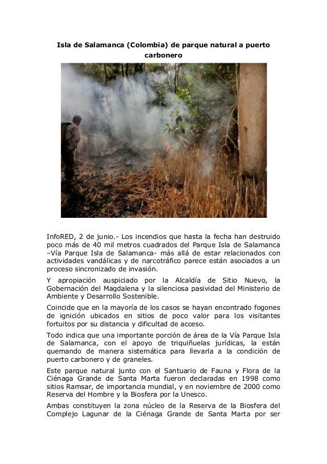 Isla de Salamanca (Colombia) de parque natural a puerto carbonero InfoRED, 2 de junio.- Los incendios que hasta la fecha h...