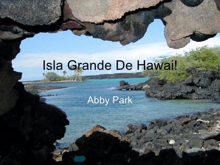 Isla grande de hawai!