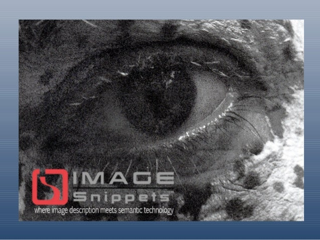 ImageSnippets™ is a new approach to the management of images (and other digital resources) using semantic technology in th...