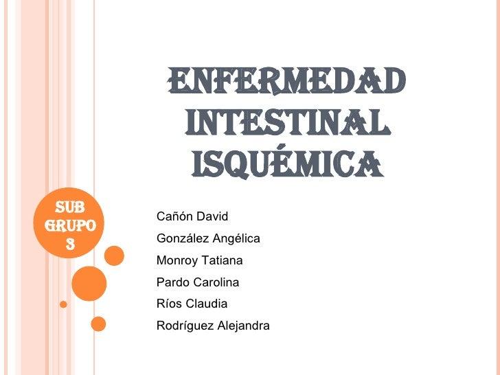 ENFERMEDAD INTESTINAL ISQUÉMICA SUB GRUPO 3 Cañón David González Angélica Monroy Tatiana Pardo Carolina Ríos Claudia Rodrí...