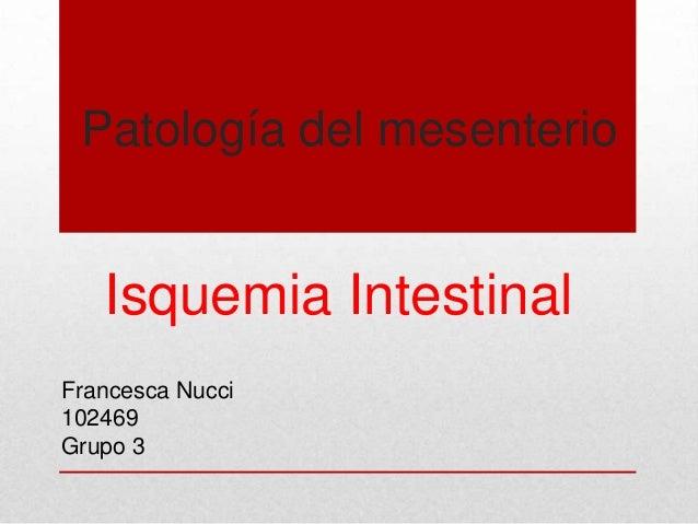 Patología del mesenterio   Isquemia IntestinalFrancesca Nucci102469Grupo 3