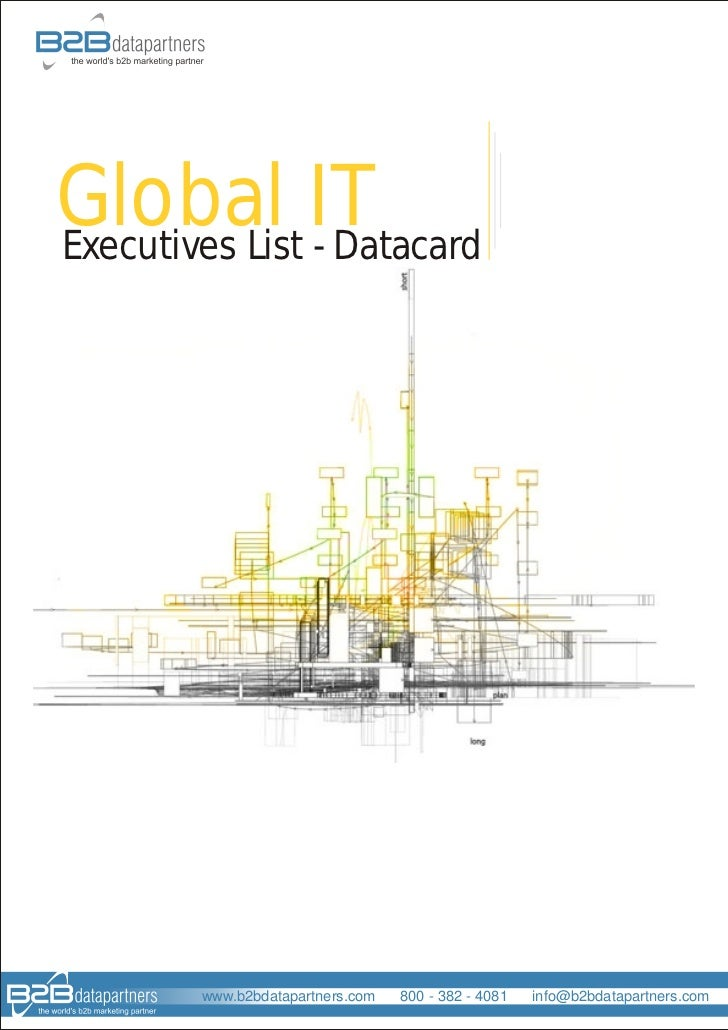Global ITExecutives List - Datacard        www.b2bdatapartners.com   800 - 382 - 4081   info@b2bdatapartners.com