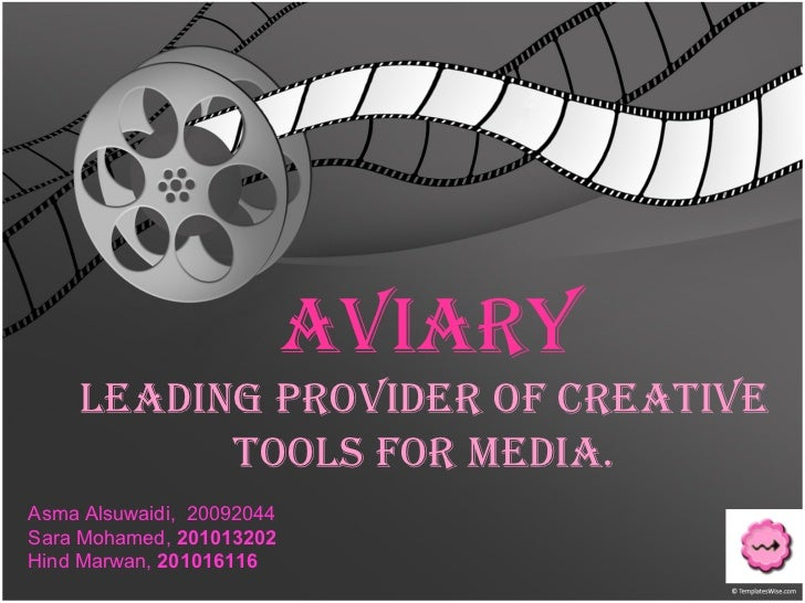 Aviary Leading provider of creative  tools for media.   Asma Alsuwaidi,  20092044 Sara Mohamed,  201013202 Hind Marwan,  2...
