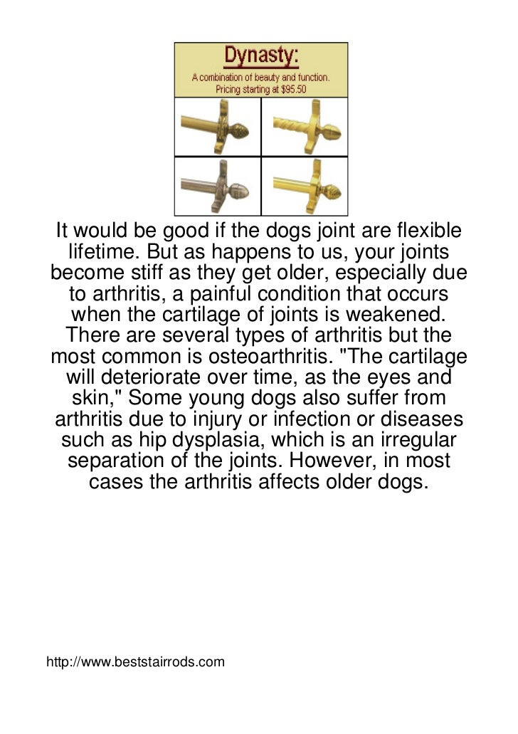 It-Would-Be-Good-If-The-Dogs-Joint-Are-Flexible-Li110