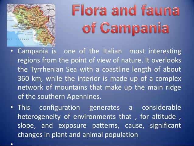• Campania is one of the Italian most interesting  regions from the point of view of nature. It overlooks  the Tyrrhenian ...
