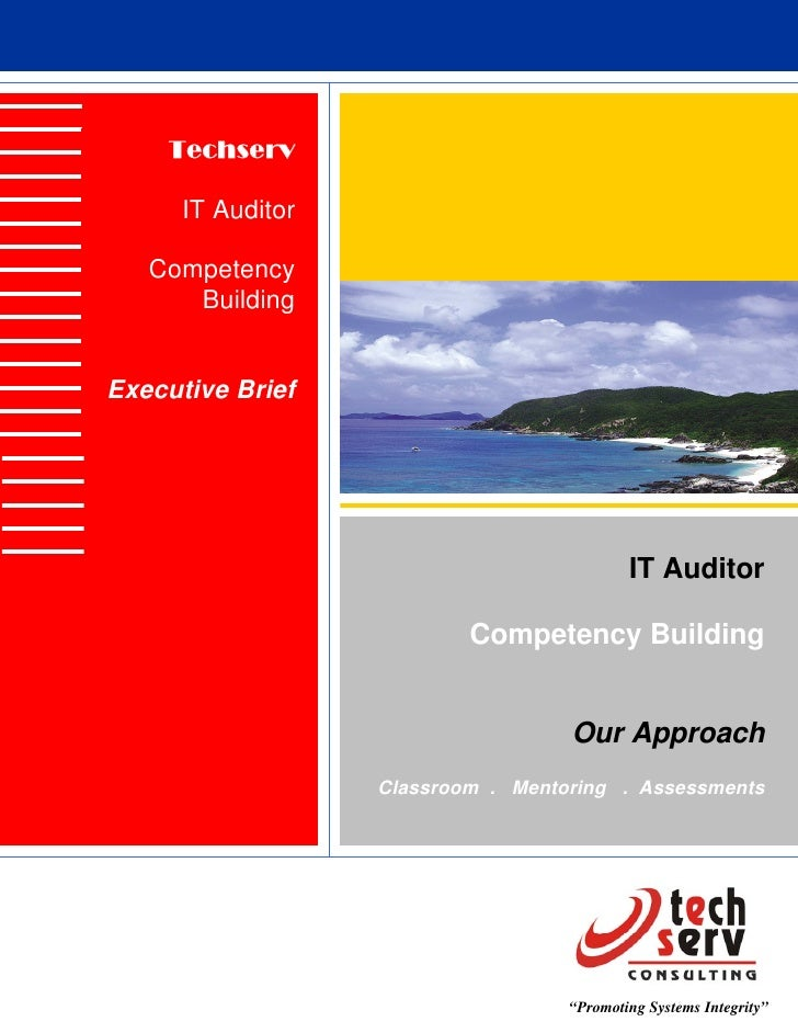 Techserv        IT Auditor     Competency       Building   Executive Brief                                                ...